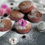 Tortine allo yogurt con cranberries e cioccolato